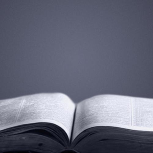 Bible<br />Studies