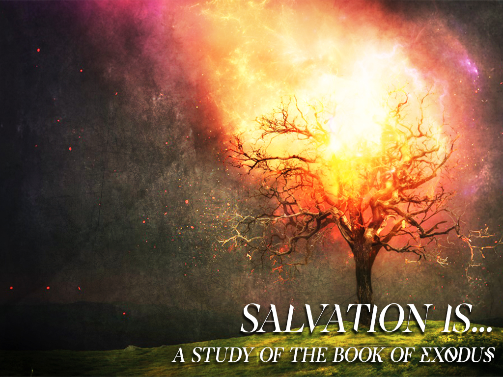 Salvation Is